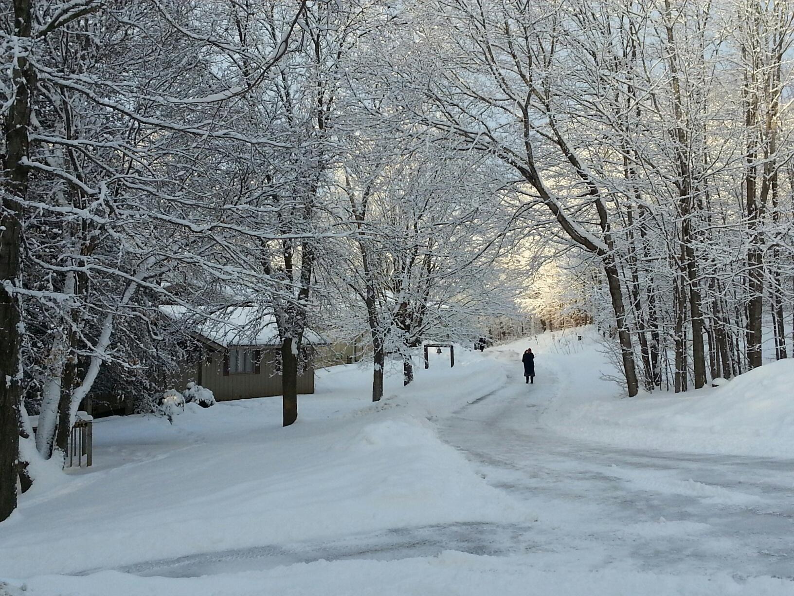 Koinonia_Winter_Road